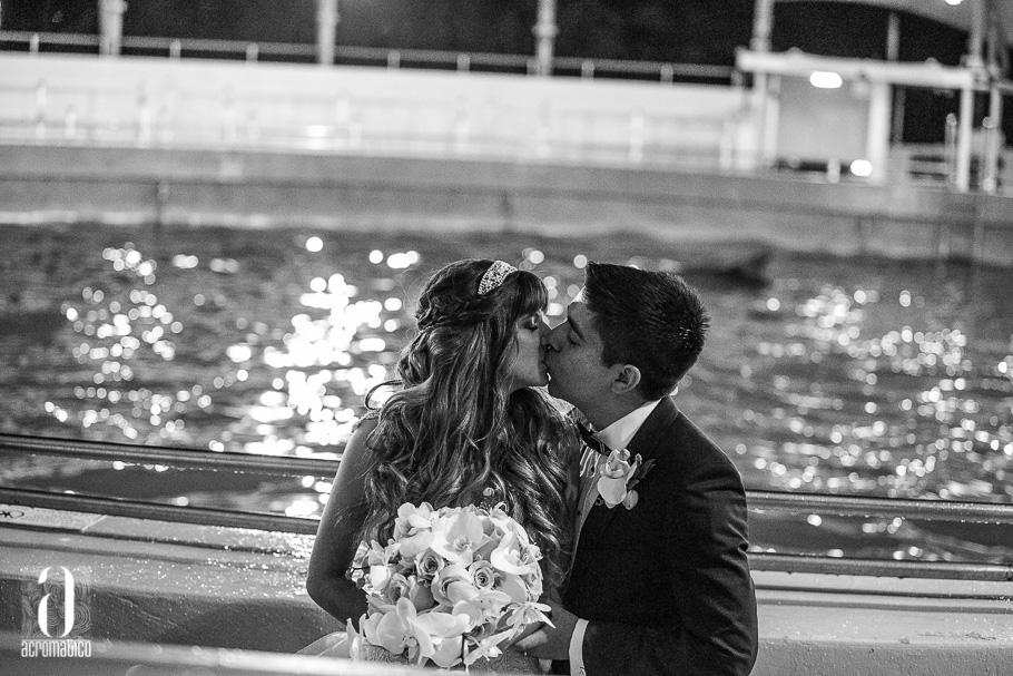 Miami Seaquarium Wedding-046