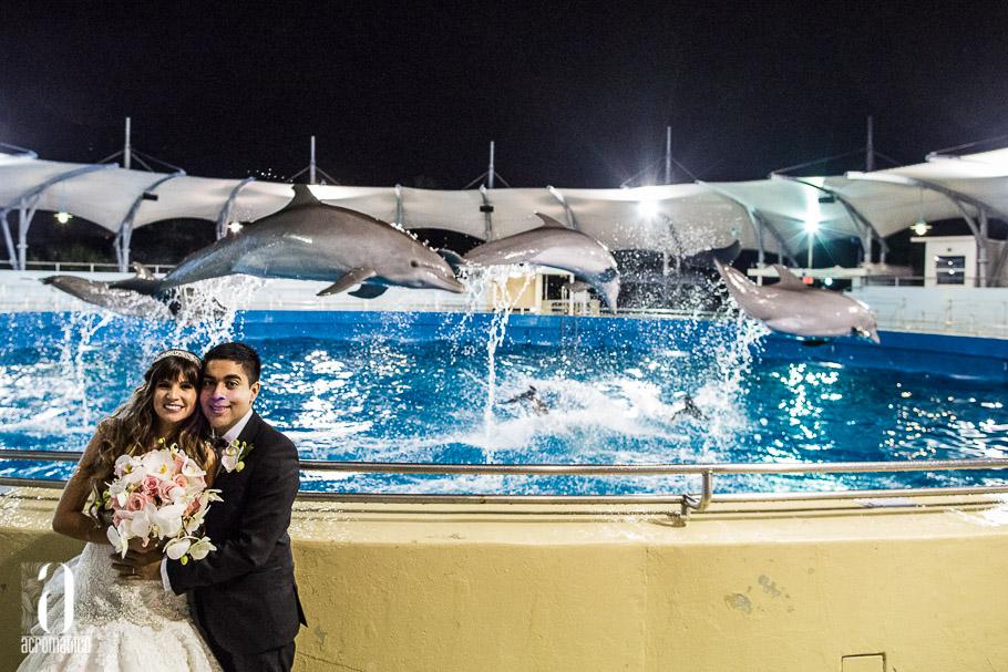 Miami Seaquarium Wedding-048