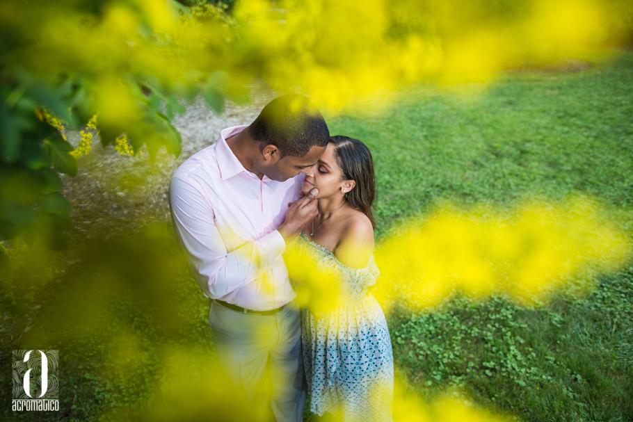 Arnold Arboretum Boston Engagement | Catherine + Junior
